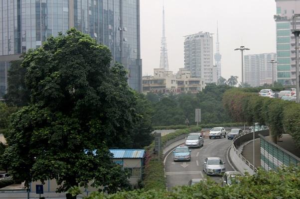 DKI Jakarta Terus Berupaya Perbaiki Kualitas Udara Melalui Penghijauan