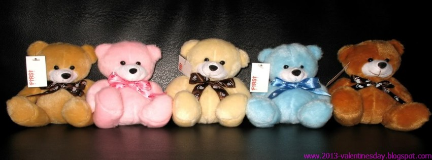 Happy Teddy Day Facebook Timeline Covers