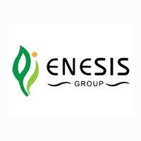 Lowongan Kerja D3/S1 di PT Enesis Group Januari 2021