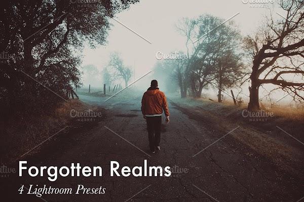 Forgotten Realms Lightroom Presets
