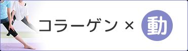 コラーゲン×動