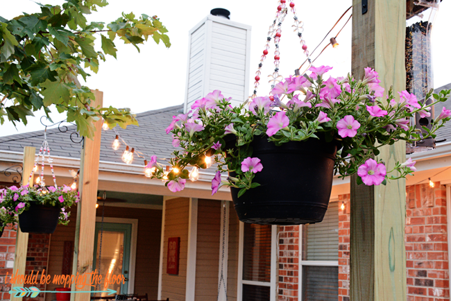Hanging Petunia Baskets