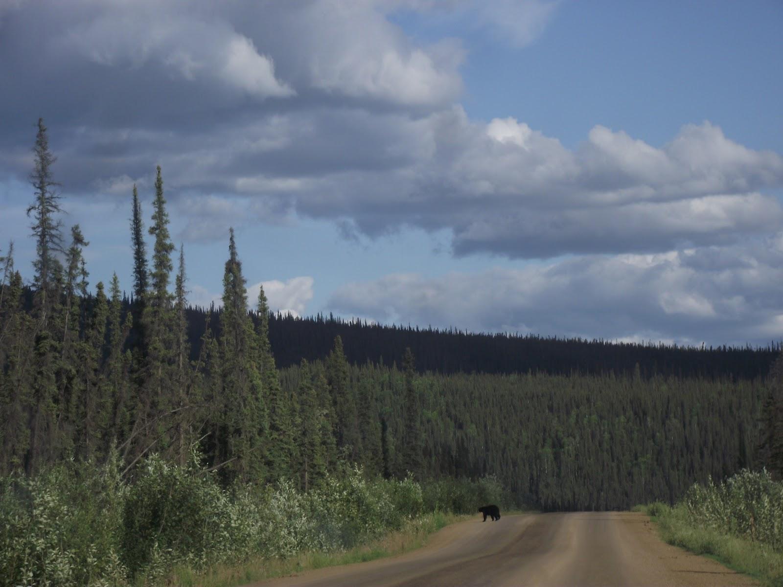 Journals of June Creek: July 2012
