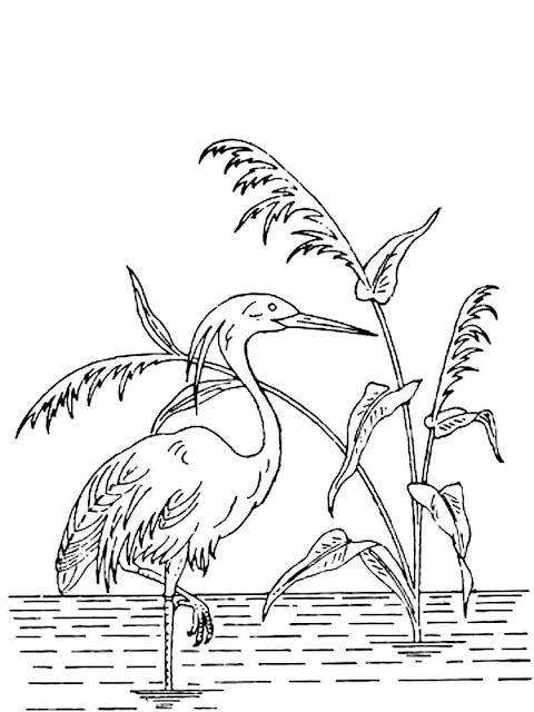 Mewarnai Gambar Burung Bangau - 9