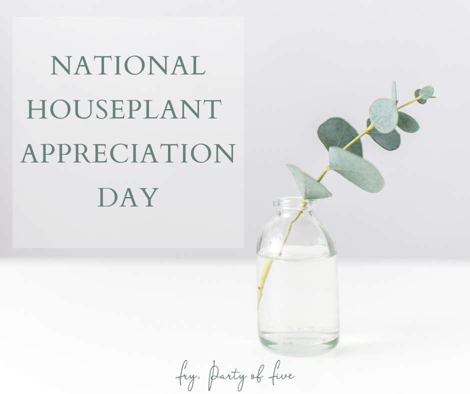 National Houseplant Appreciation Day Wishes Sweet Images