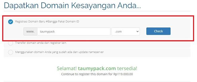 memilih-domain-untuk-website