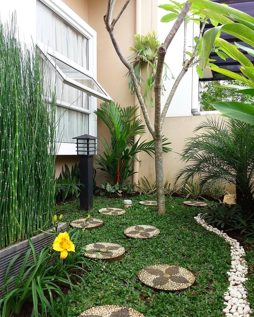 Taman Minimalis Dalam Rumah Type 36 Desain Dekorasi Rumah