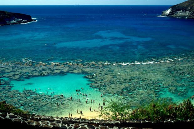 Oahu Snorkeling Hanauma Bay Hawaii