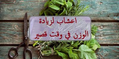 اعشاب لزيادة الوزن في وقت قصير
