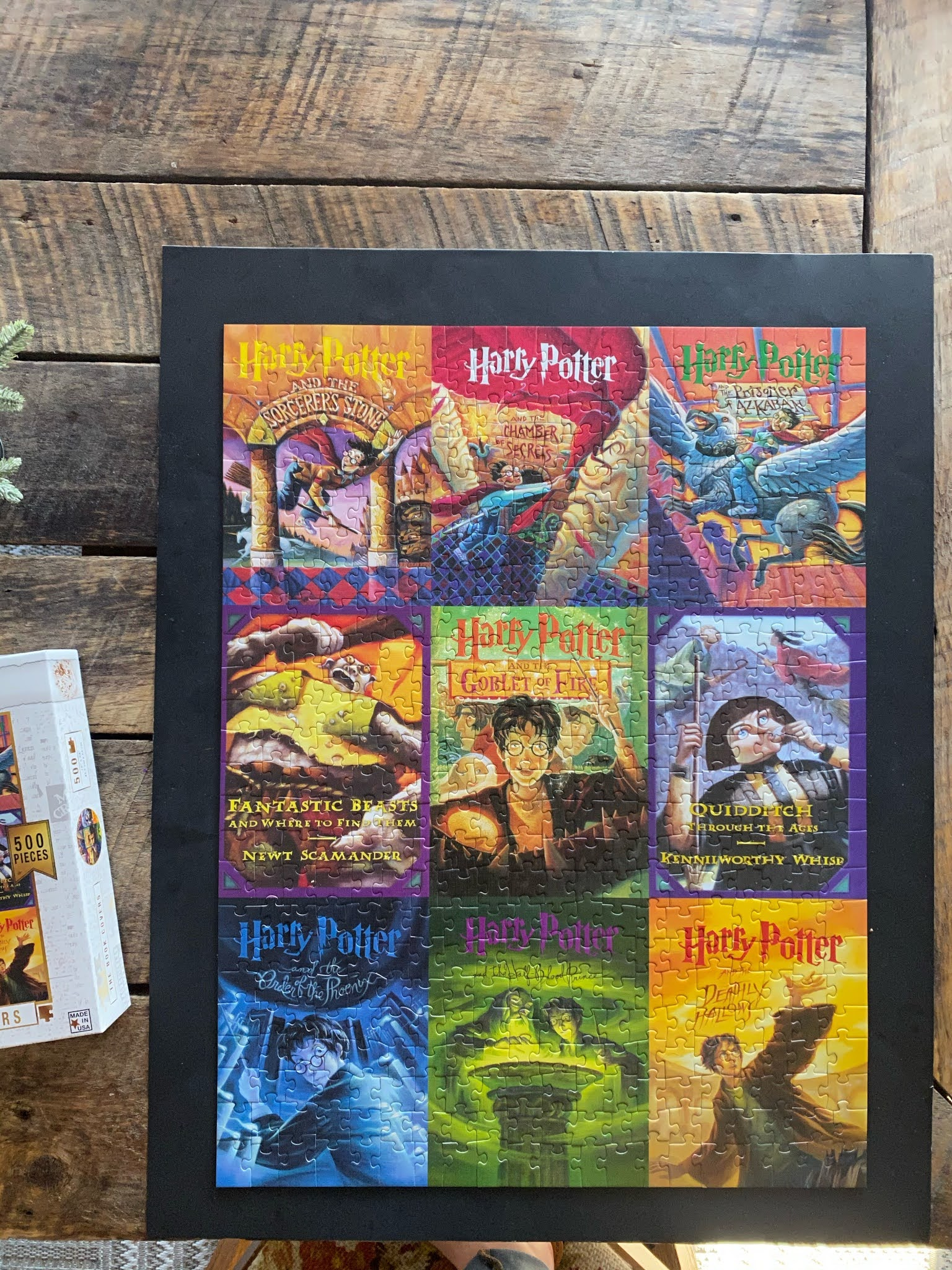 Harry Potter Puzzle | www.biblio-style.com