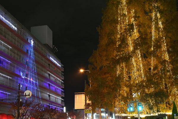 堺東イルミネーション2015 <大阪 堺市>
