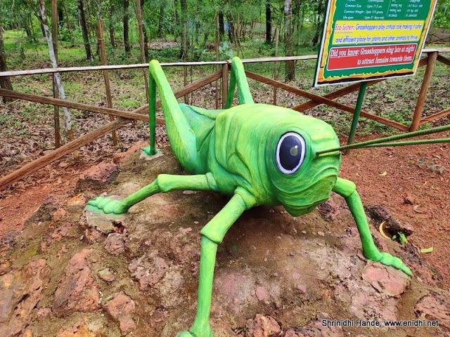 grasshopper midate