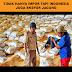 Tidak Hanya Impor, Tapi Indonesia Juga Ekspor Jagung