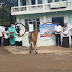 Dirut dan Jajaran RSUD. Prof,DR. M.Ali Hanafiah Batusangkar. Tebar sapi korban