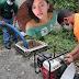 Menor de 15 años hijastro de la occisa Carmen Paulino es investigado por complicidad.