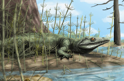 Paleontologists discover 250-million-year-old new species of reptile in Brazil