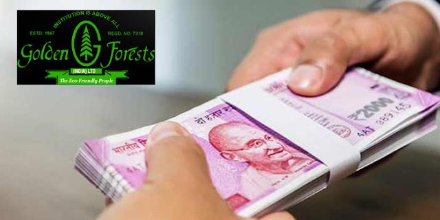 GOLDEN FOREST: 18 साल से रुका पेमेंट शुरू, निवेशकों में उत्साह   BUSINESS NEWS