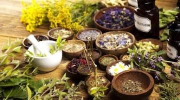 Ervas:  remédios caseiros para acabar com a insônia