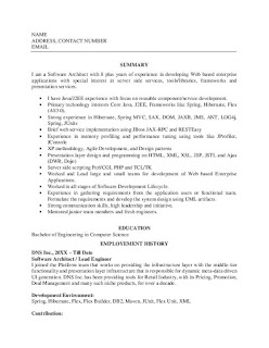 Software Architect Resume Examples