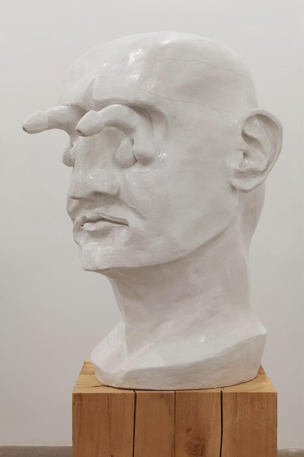 Erect Penis Head 14