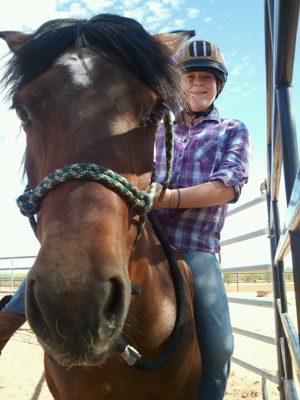 Tucson Equestrian Center Pony Posse Blog