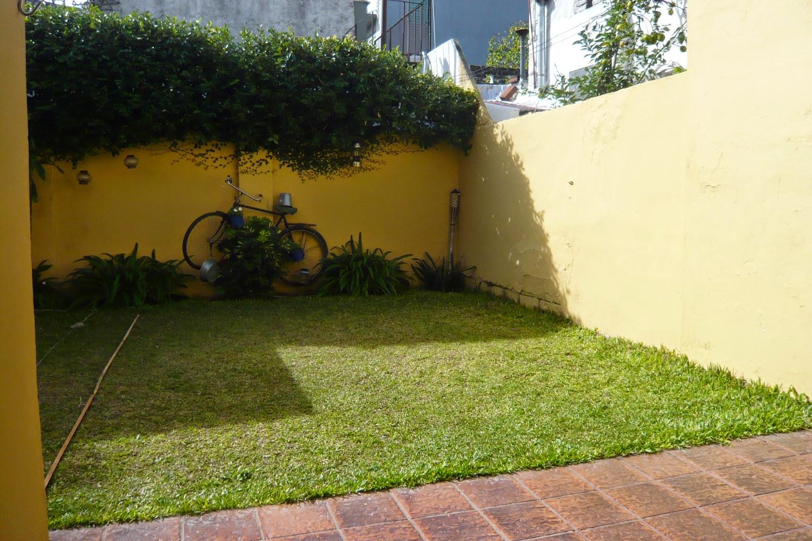 Cc arquitectos proyecto de pileta en jard n peque o en beccar for Arbolitos para jardines pequenos