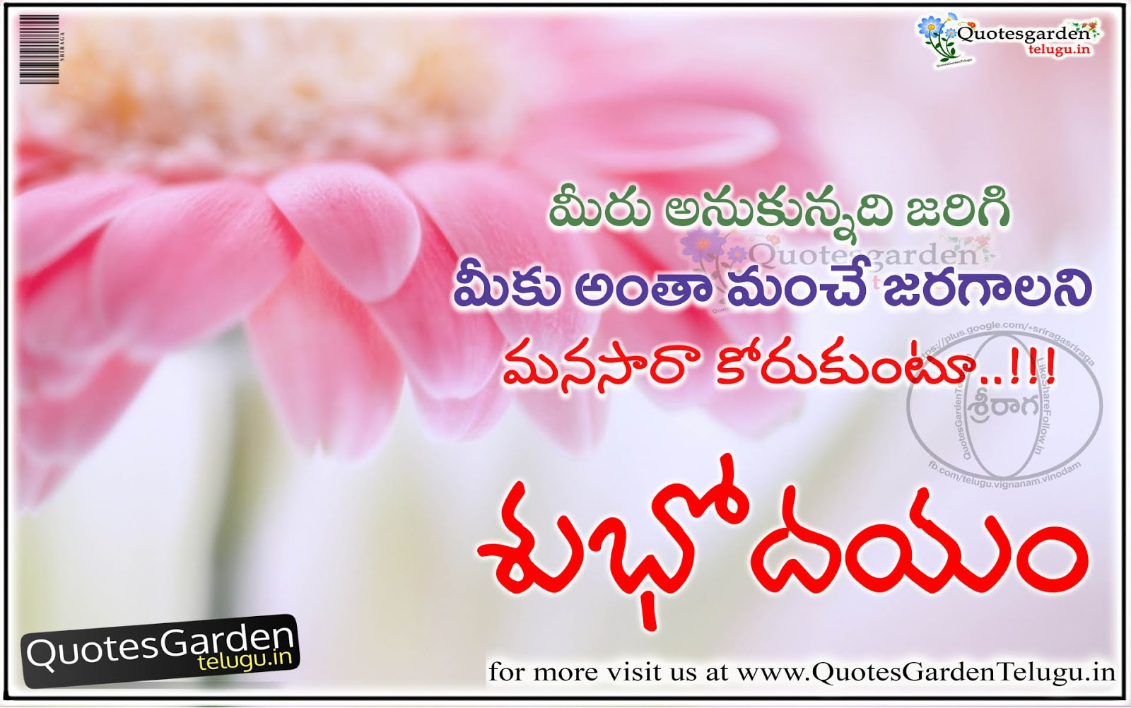 Best Good Morning Quotes In Telugu Quotes Garden Telugu Telugu Quotes English Quotes Hindi Quotes