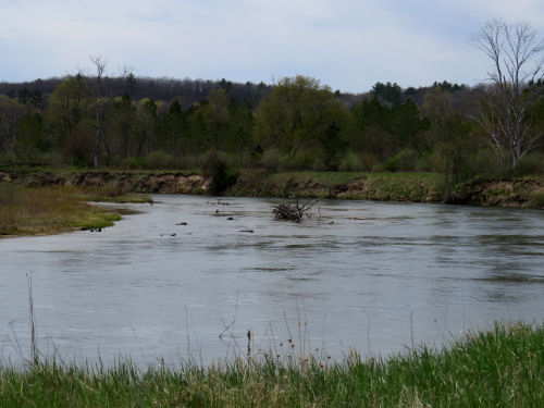 Manistee River