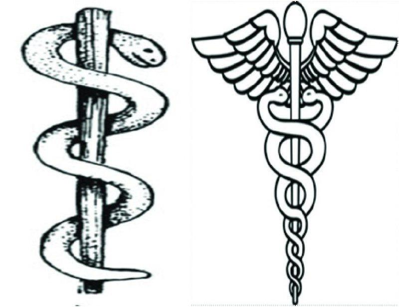 What does the Snake represent on the Medical symbol?