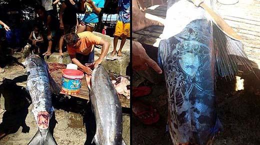 Enorme pez con extraños patrones en su cuerpo capturado en Filipinas - ¿Puedes descifrarlo?