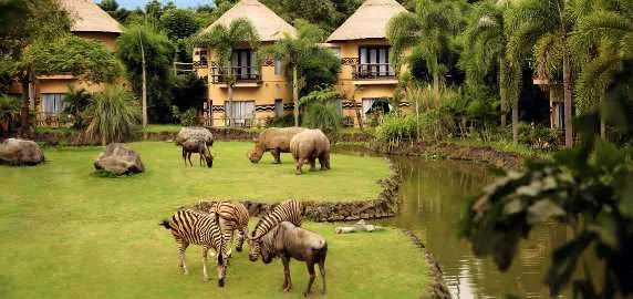 Tempat Wisata di Bali yang Menarik