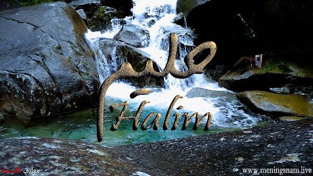 معنى اسم حليم وصفات حامل هذا الاسم Halim