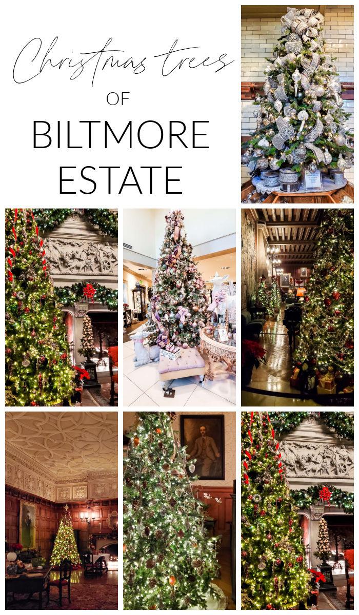 Christmas trees inside Biltmore