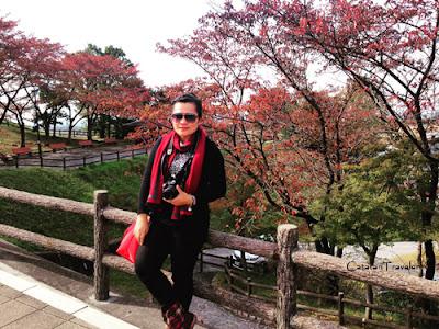 Tips, Traveling, Musim Gugur, Autumn, Winter, Jepang, Japan, catatan traveler chaycya, www.catatantraveler.com, Kyoto, Osaka, Tokyo, Eropa, Asia Timur, Amerika Utara, Indonesia, Tropis, Jalan-jalan, Bacpacker,