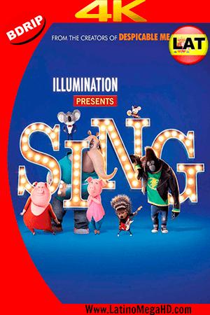 Sing: ¡Ven y canta! (2016) Latino Ultra HD 4K 2160P ()