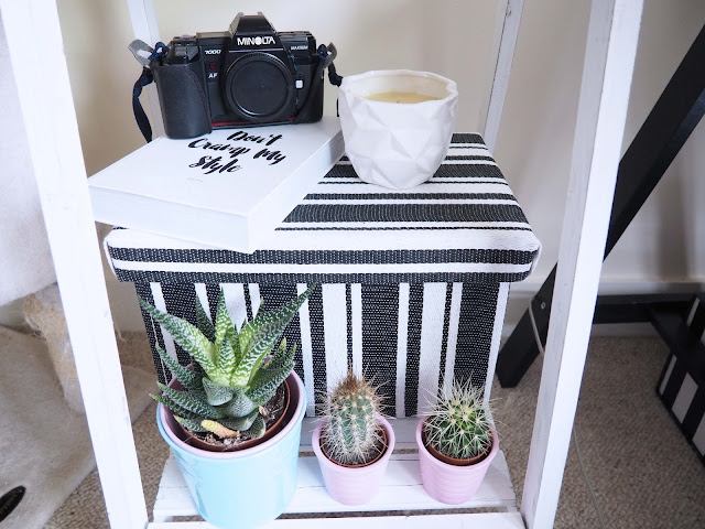 styling shelf with plants