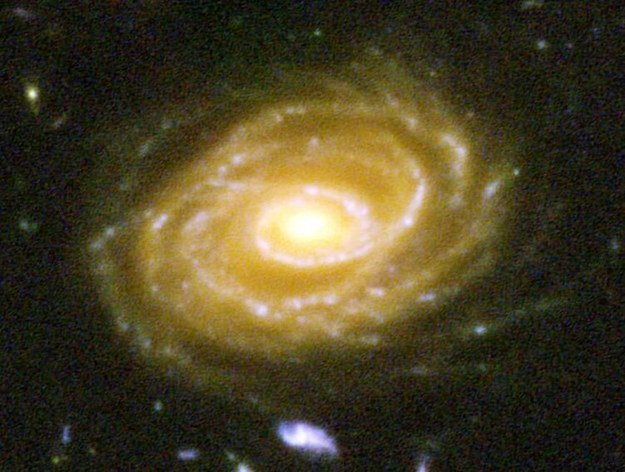 مجرة-UDF-423