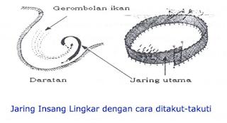 Jaring insang lingkar
