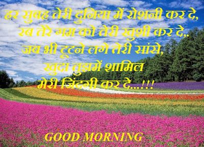 Good morning quotes for love