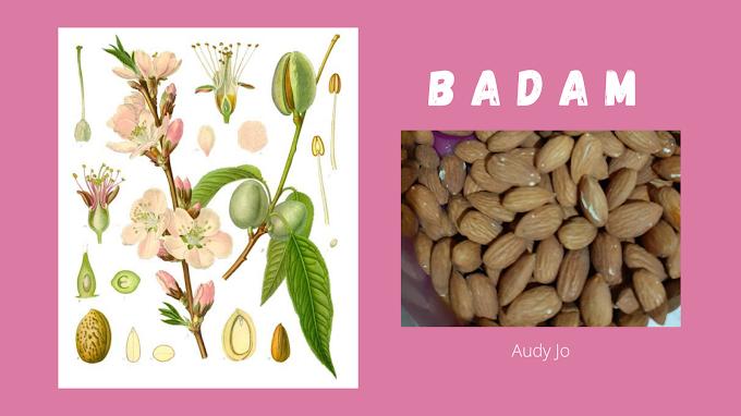Badam atau Almond Panggang