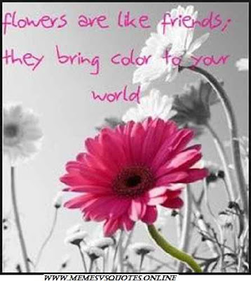 Flower Are Like Friends
