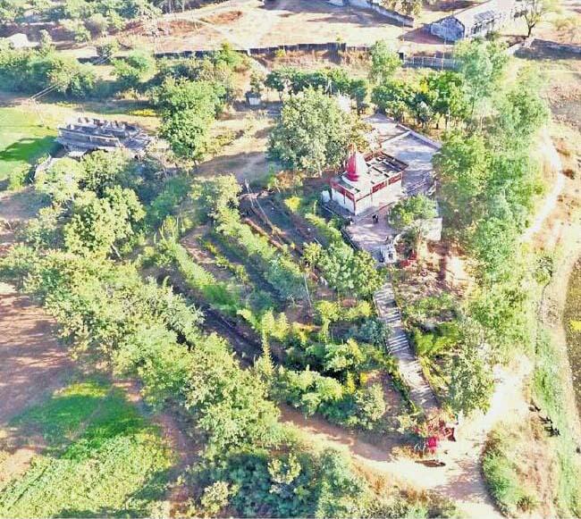 Jhabua Nakshtra Vatika-  दो देशों के राष्ट्रीय वृक्ष लगे हैं झाबुआ की नक्षत्र वाटिका में, औषधीय पेड़ भी