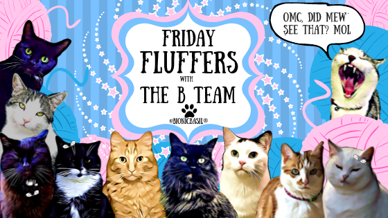 Friday Fluffers withThe B Team ©BionicBasil®