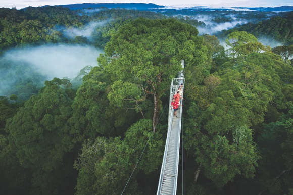 photo source & Alizul: 10 AMAZING TREETOP WALKWAYS AROUND THE WORLD