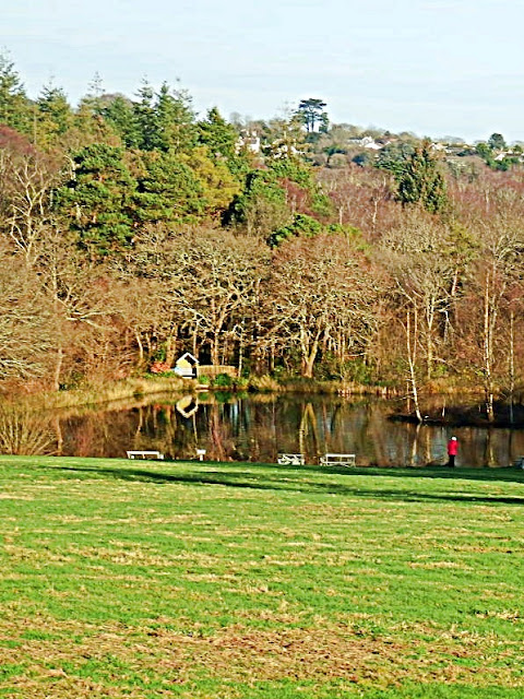 Pinetum Gardens lake