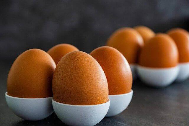 ما هو البيض الأفضل للنظام الغذائي؟ بني أم أبيض؟