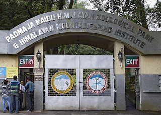 Padmaja Naidu Himalayan Zoological Park, better known as Darjeeling zoo