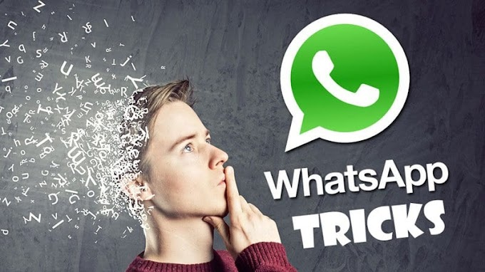 WhatsApp new tricks and tips. WhatsApp knowledge