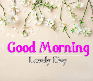 New Good Morning 4k Full HD Images Download For Daily%2B49