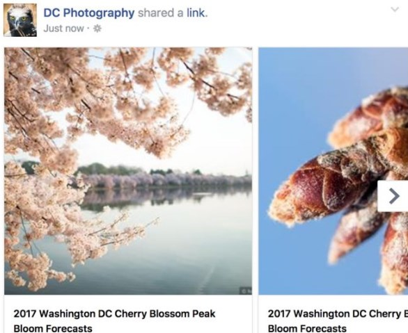 facebook post image size 2016